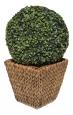 Květináč vodní hyacint SUNIX H-650253 S 18x18 cm
