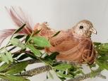 Ptáček na skřipci Péřový růžový