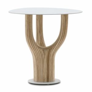 Acacia stolek