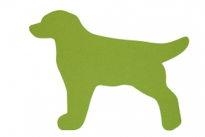 Koberec labrador zelený